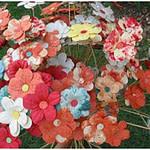 spring-flowers-craft-geographics